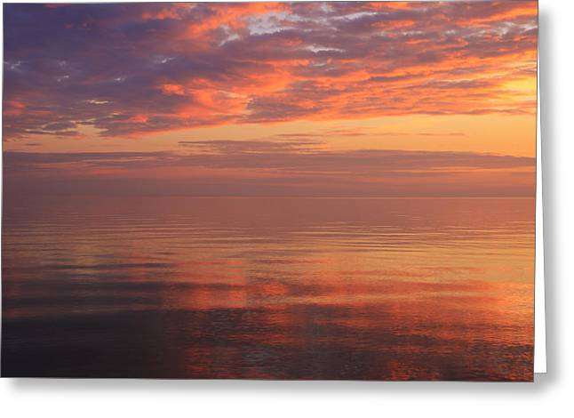 Reflecting Water Greeting Cards - Spectacular Sunset Greeting Card by Rachel Cohen