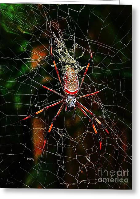 Purchase Greeting Cards - Spider Silk Greeting Card by Patrick Witz