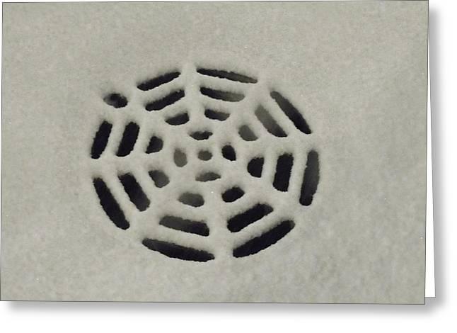 Anna Villarreal Garbis Greeting Cards - Spiderweb in the Snow Greeting Card by Anna Villarreal Garbis