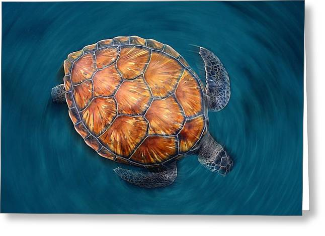 Wild Life Greeting Cards - Spin Turtle Greeting Card by Sergi Garcia