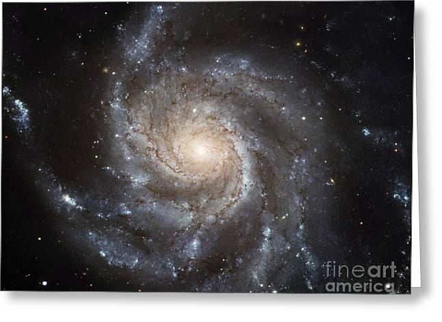 Astral Greeting Cards - Spiral Galaxy M101 Greeting Card by NASA / ESA / Space Telescope Science Institute