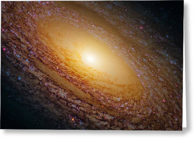 Spiral Galaxy Ngc 2841 Greeting Card by Marco Oliveira
