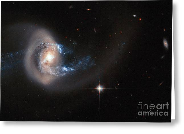 Merging Greeting Cards - Spiral Galaxy Ngc 7714 Greeting Card by Science Source