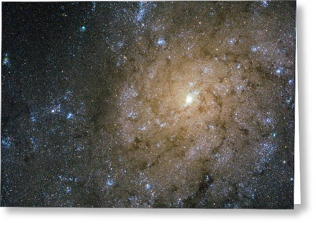 Merging Greeting Cards - Spiral Galaxy Ngc 7793 Greeting Card by Science Source