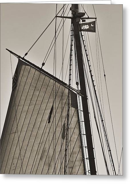 Historic Schooner Greeting Cards - Spirit of South Carolina Schooner Sailboat Sail Greeting Card by Dustin K Ryan