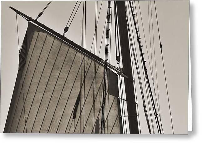 Spirit of South Carolina Schooner Sailboat Sail Greeting Card by Dustin K Ryan