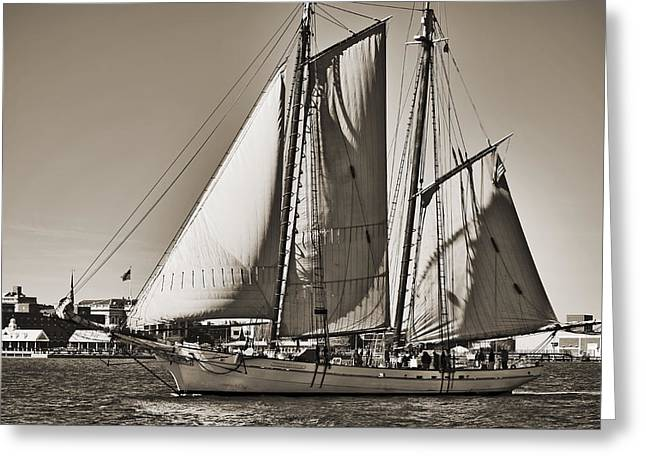 Historic Schooner Greeting Cards - Spirit of South Carolina Schooner Sailboat Sepia Toned Greeting Card by Dustin K Ryan