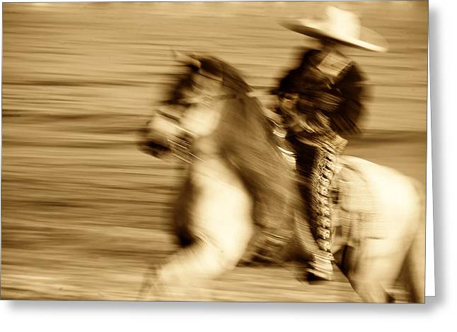 Equine Photo Greeting Cards - Spirit of the Charro3 Greeting Card by Nick Sokoloff