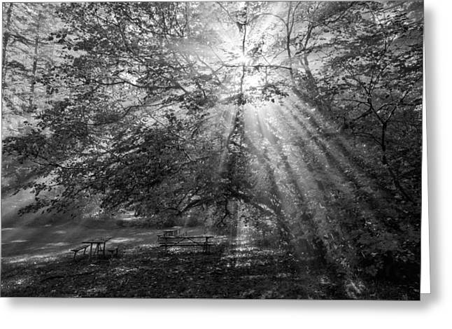 White Photographs Greeting Cards - Spiritual Picnic Greeting Card by Mark Kiver