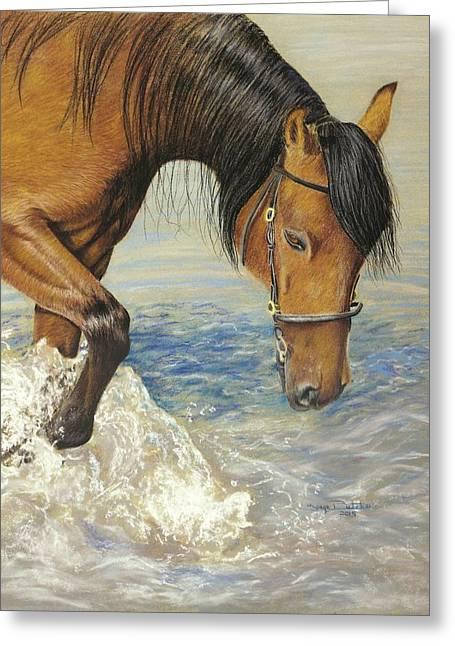 Equine Pastels Pastels Greeting Cards - Splashing Good Time Greeting Card by Tonya Butcher