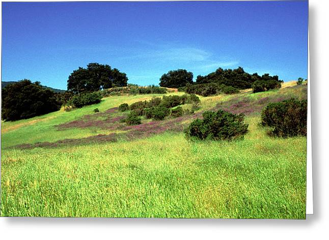 Landscape Framed Prints Greeting Cards - Splendor in the Grass Greeting Card by Kathy Yates