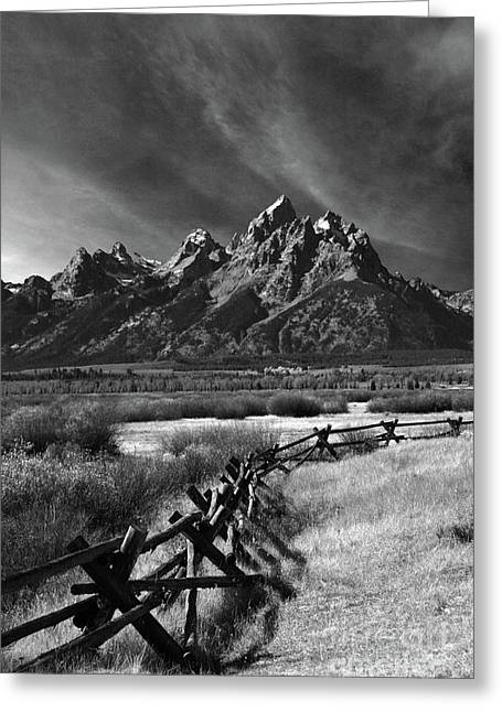 Split Rail Fence Greeting Card by Timothy Johnson