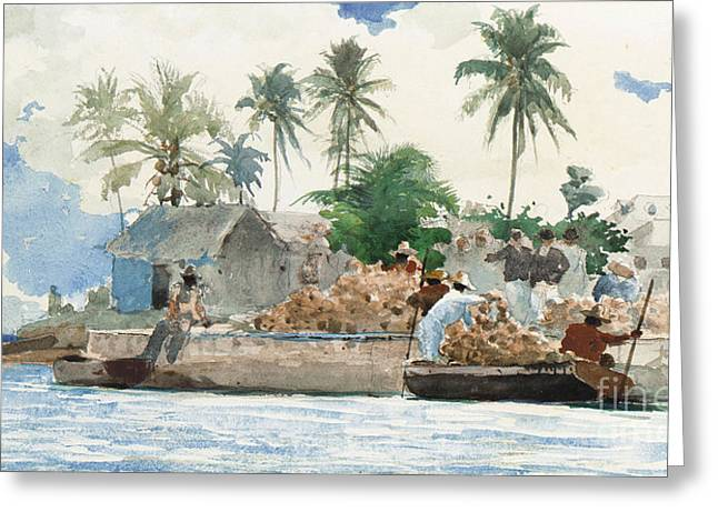 Docked Sailboats Paintings Greeting Cards - Sponge Fisherman in the Bahama Greeting Card by Winslow Homer