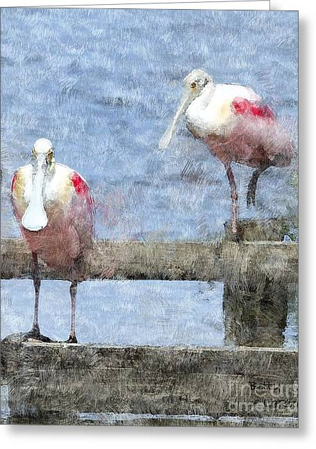 Spoonbill Greeting Cards - Spoonbills Hanging Out Greeting Card by Betty LaRue