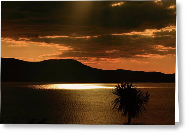 Sunset Prints Greeting Cards - Spotlight Bay Greeting Card by Aidan Moran