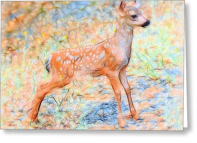 Purchase Greeting Cards - Spotted Fawn Greeting Card by Patrick Witz
