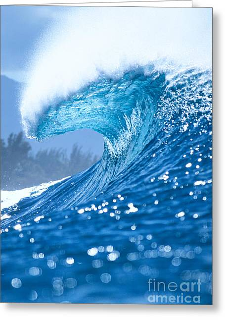 Vince Greeting Cards - Spray And Curl Greeting Card by Vince Cavataio - Printscapes