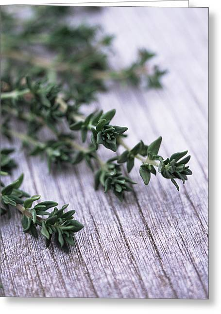 Antiseptic Greeting Cards - Sprigs Of Thyme Greeting Card by Maxine Adcock