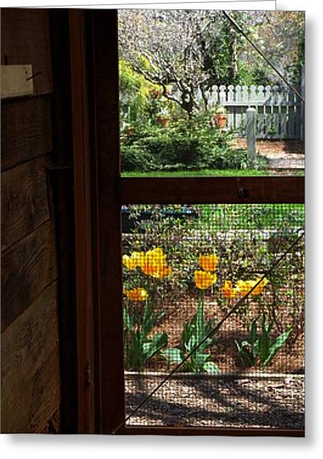 Screen Doors Greeting Cards - Spring Afternoon Greeting Card by Donna  Hernandez