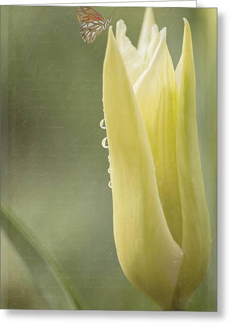March Greeting Cards - Spring Art - Spirit Of Love Greeting Card by Jordan Blackstone