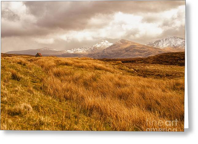 Snow Capped Greeting Cards - Spring At Applecross Greeting Card by White Stork Gallery