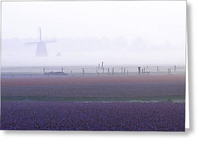 Mills Photographs Greeting Cards - Spring At Last Greeting Card by Ben Van Der Sande
