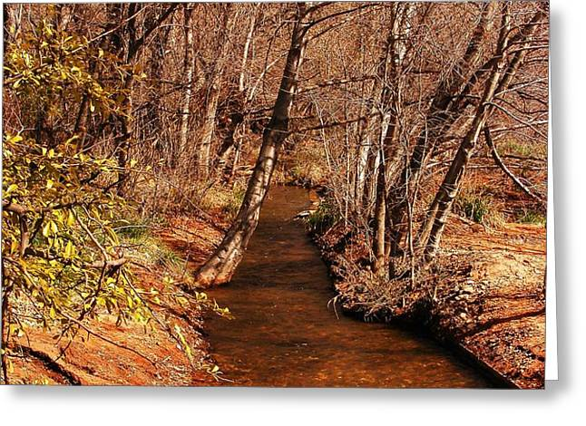 Spring at Red Rock Crossing Greeting Card by Marilyn Smith