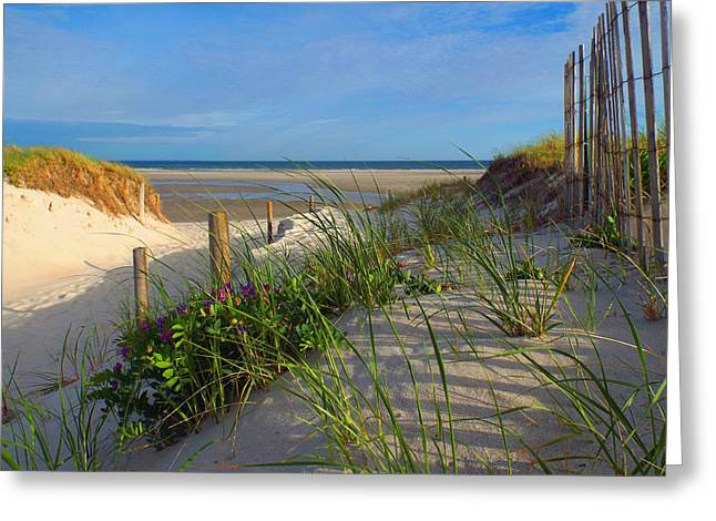 Dennis Ma Photographs Greeting Cards - Spring Beach Visions Greeting Card by Dianne Cowen