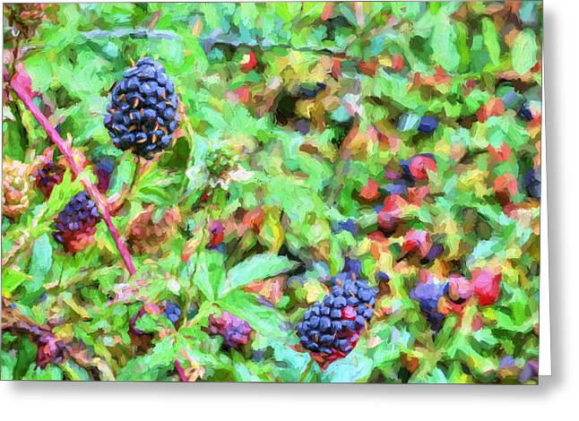 Spring Berries Greeting Card by JC Findley