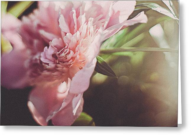 Spring Florals Greeting Cards - Spring Blossom Greeting Card by Tracy  Jade