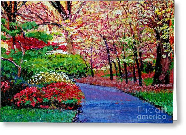 Pathways Greeting Cards - Spring Blossoms Greeting Card by David Lloyd Glover