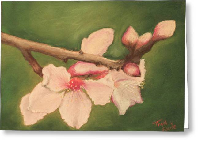 Flower. Petals Pastels Greeting Cards - Spring Blossoms Greeting Card by Tina Foote