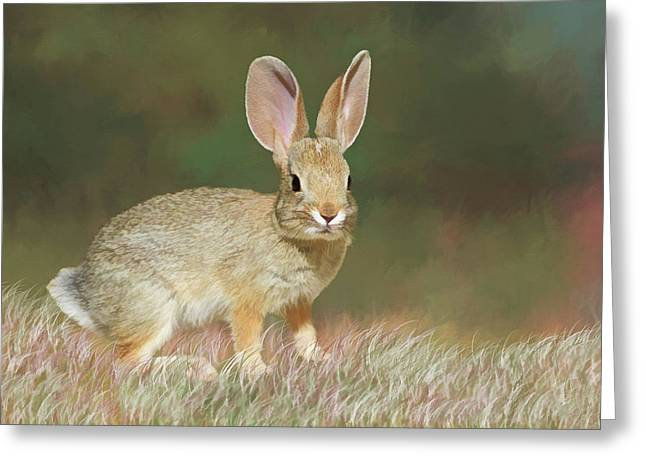 Spring Bunny Greeting Card by Donna Kennedy