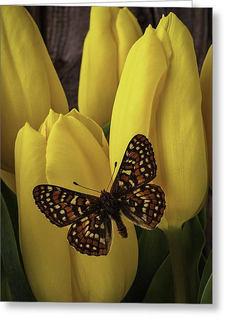 Yellow Leaves Greeting Cards - Spring Butterfly On Tulips Greeting Card by Garry Gay