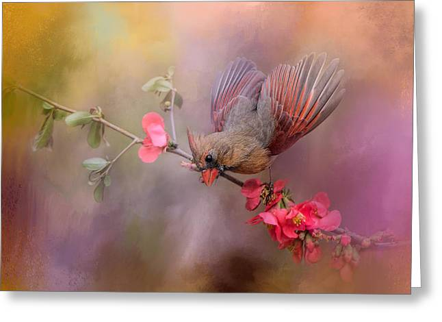 Birds With Flowers Greeting Cards - Spring Cardinal 2 Greeting Card by Jai Johnson