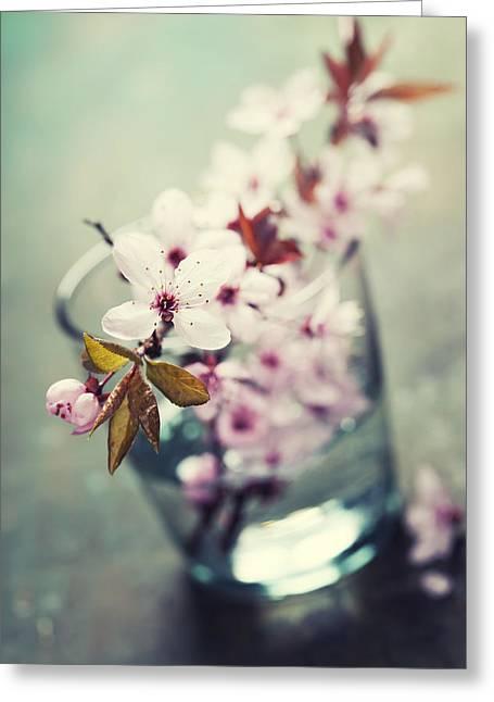 Glass Vase Greeting Cards - Spring Cherry blossoms Greeting Card by Natalia Klenova