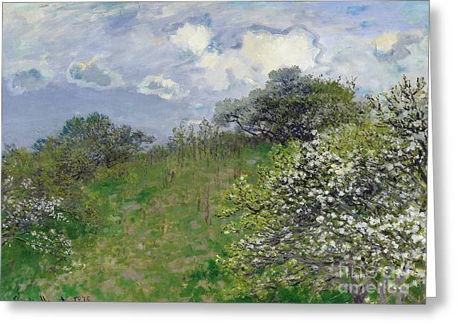 Hillsides Greeting Cards - Spring Greeting Card by Claude Monet