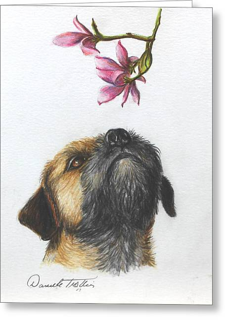 Puppies Drawings Greeting Cards - Spring Greeting Card by Daniele Trottier