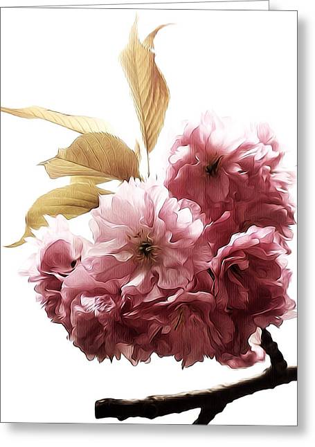 Prospects Greeting Cards - Spring Delicacy Greeting Card by Natasha Marco