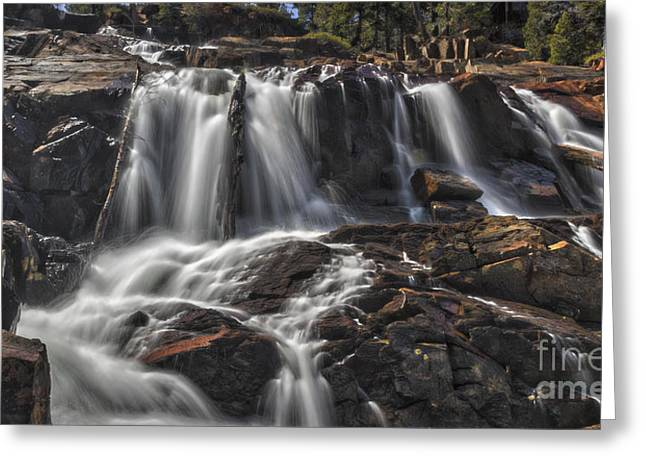Watermelon Greeting Cards - Spring Falls Greeting Card by Mitch Shindelbower