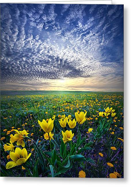 Flowers Photographs Greeting Cards - Spring Fever Greeting Card by Phil Koch