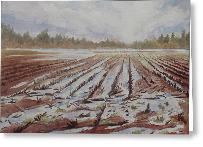 Willamette Greeting Cards - Spring Flood Greeting Card by Jenny Armitage