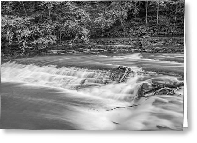 Finger Lakes Greeting Cards - Spring Flow - bw Greeting Card by Steve Harrington