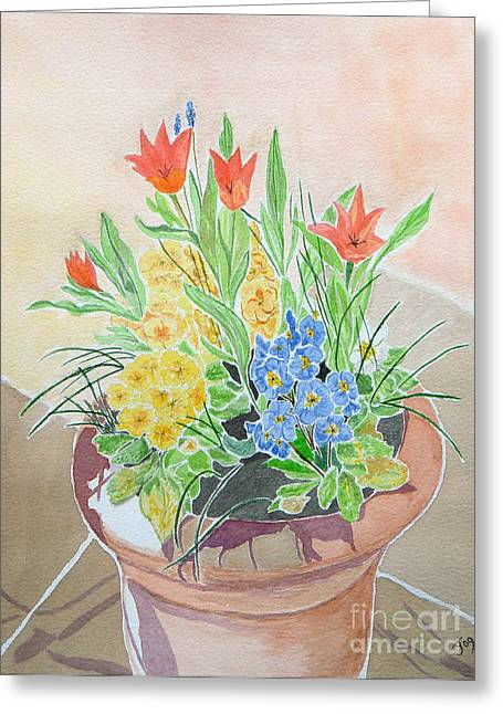 Spring Flowers In Pot Greeting Card by Yvonne Johnstone