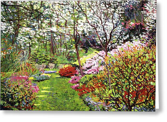 Spring Forest Vision Greeting Card by David Lloyd Glover