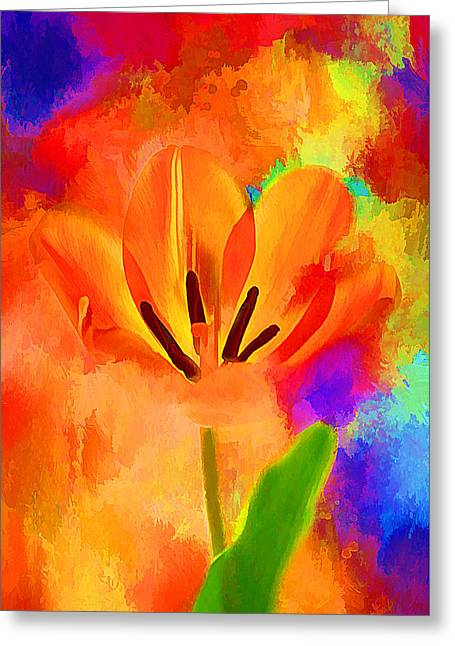 Spring Full Of Color Greeting Card by Darren Fisher