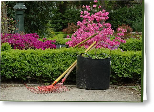 Spring Gardening Greeting Card by Frank Tschakert