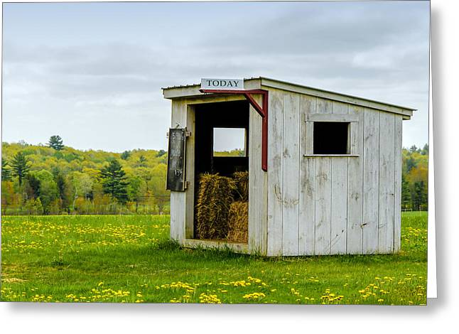 Sheds Greeting Cards - Spring Hay Greeting Card by Donna Lee