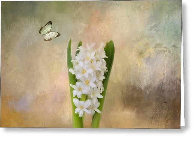 Spring Hyacinth Greeting Card by Kim Hojnacki