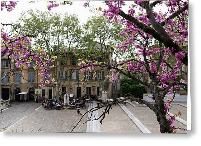 The Pope Greeting Cards - Spring In Avignon 2 Greeting Card by Andrew Fare